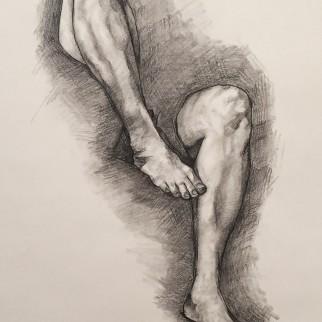 leg study, 2016
